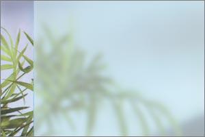 Protection idéale pour les regards indiscrets, film d'agencement et décoration des vitrages. Effet verre dépoli (sablé). Idéal pour le vitrage des bureaux. Garantie 10 ans de Johnson Window Film (installé par un professionnel uniquement)