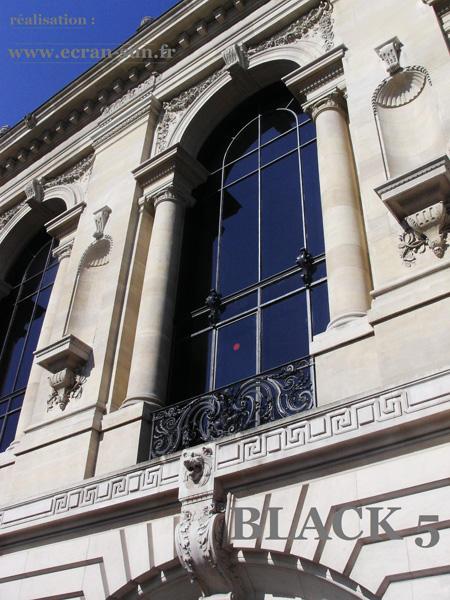 Vitres teintées bâtiment du Petit Palais à Paris